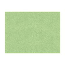 Celadon Solids Drapery and Upholstery Fabric by Brunschwig & Fils
