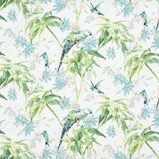 Aqua/White Tropical Drapery and Upholstery Fabric by Brunschwig & Fils