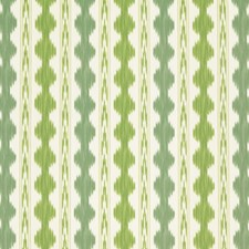 Aloe/Fern Ikat Drapery and Upholstery Fabric by Brunschwig & Fils