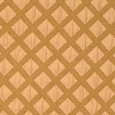Sahara Contemporary Drapery and Upholstery Fabric by S. Harris