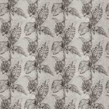 Charcoal Leaves Drapery and Upholstery Fabric by Vervain