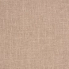 Cameo Solid Drapery and Upholstery Fabric by Trend