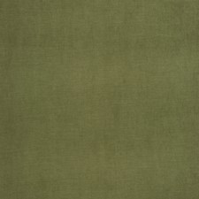 Turtle Solid Drapery and Upholstery Fabric by Trend