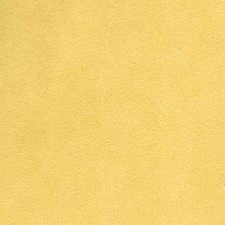 Sunshine Solid Drapery and Upholstery Fabric by Greenhouse
