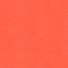 Coral Solids Drapery and Upholstery Fabric by Lee Jofa