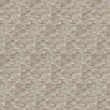 Chamois Geometric Drapery and Upholstery Fabric by Fabricut