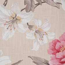 Neapolitan Drapery and Upholstery Fabric by RM Coco