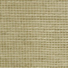 Desert Drapery and Upholstery Fabric by Scalamandre