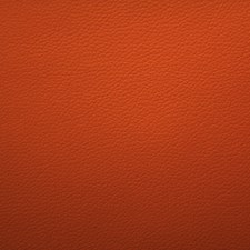 Hermes Drapery and Upholstery Fabric by Scalamandre