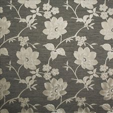 Raven Drapery and Upholstery Fabric by Kasmir