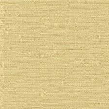 Blonde Drapery and Upholstery Fabric by Kasmir