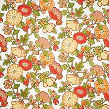 Citrus Contemporary Drapery and Upholstery Fabric by Pindler