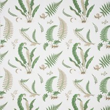 Snow Drapery and Upholstery Fabric by G P & J Baker