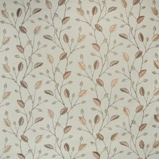 Acorn Floral Drapery and Upholstery Fabric by Greenhouse