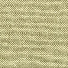 Hazelwood Drapery and Upholstery Fabric by Scalamandre