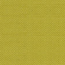 Ginko Drapery and Upholstery Fabric by Scalamandre