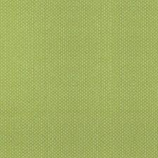 Lemonade Drapery and Upholstery Fabric by Scalamandre