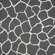 Creme/Beige/Grey Transitional Drapery and Upholstery Fabric by JF