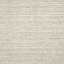 Feather Solid Drapery and Upholstery Fabric by Pindler