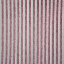Violet Stripe Drapery and Upholstery Fabric by Pindler