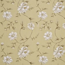 Celedon/Ivory Embroidery Drapery and Upholstery Fabric by G P & J Baker