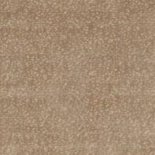 Oyster Velvet Drapery and Upholstery Fabric by G P & J Baker