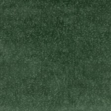 Emerald Velvet Drapery and Upholstery Fabric by G P & J Baker