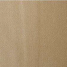 Gold Dust Solids Drapery and Upholstery Fabric by Kravet