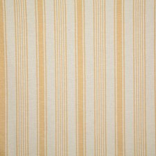 Soleil Stripe Drapery and Upholstery Fabric by Pindler
