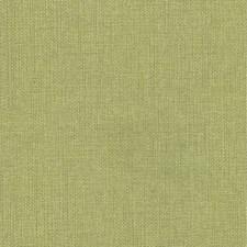 Avocado Drapery and Upholstery Fabric by Kasmir