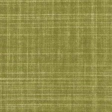 Fern Drapery and Upholstery Fabric by Robert Allen