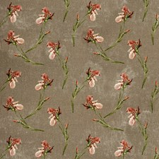 Mole Botanical Drapery and Upholstery Fabric by G P & J Baker