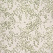 Moss Botanical Drapery and Upholstery Fabric by Brunschwig & Fils