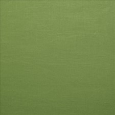 Kelly Green Drapery and Upholstery Fabric by Kasmir