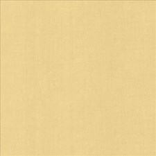 Lanolin Drapery and Upholstery Fabric by Kasmir