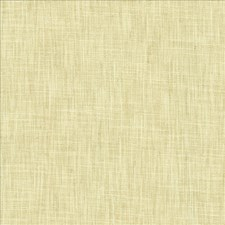 Sugarcane Drapery and Upholstery Fabric by Kasmir