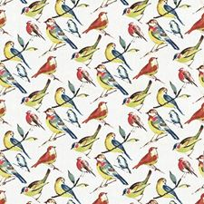 Summer Drapery and Upholstery Fabric by Kasmir