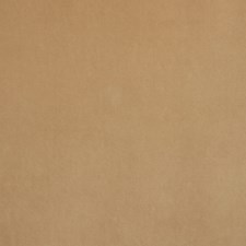 Sand Drapery and Upholstery Fabric by Silver State