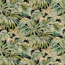 Black/Green/Camel Botanical Drapery and Upholstery Fabric by Kravet