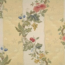 Multi On Jasmine/Bisque Drapery and Upholstery Fabric by Scalamandre