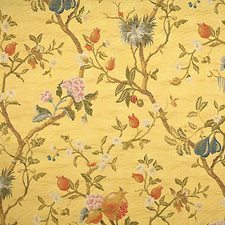 Multi On Maize Drapery and Upholstery Fabric by Scalamandre
