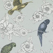 Dove Birds Drapery and Upholstery Fabric by Duralee