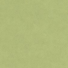 Keylime Animal Skins Drapery and Upholstery Fabric by Duralee