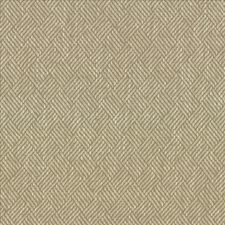 Oyster Drapery and Upholstery Fabric by Kasmir