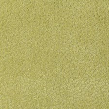 Citron Dots Drapery and Upholstery Fabric by Duralee