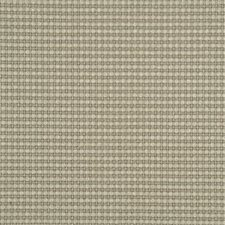 Silver Birch Solid Drapery and Upholstery Fabric by Threads