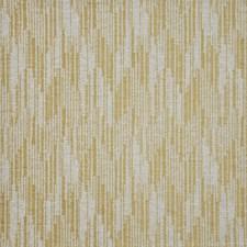 Paddington Drapery and Upholstery Fabric by Maxwell