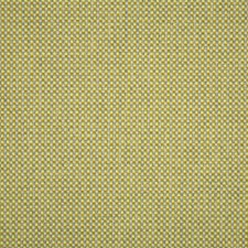 Ginkgo Drapery and Upholstery Fabric by Silver State