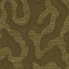 Fools Gold Drapery and Upholstery Fabric by Robert Allen