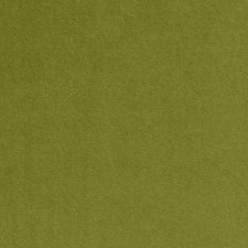 Citron Solids Drapery and Upholstery Fabric by Clarke & Clarke